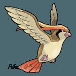 018 - Пиджеот (Pidgeot)