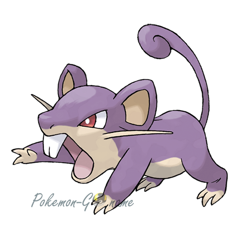 019 - Раттата (Rattata)