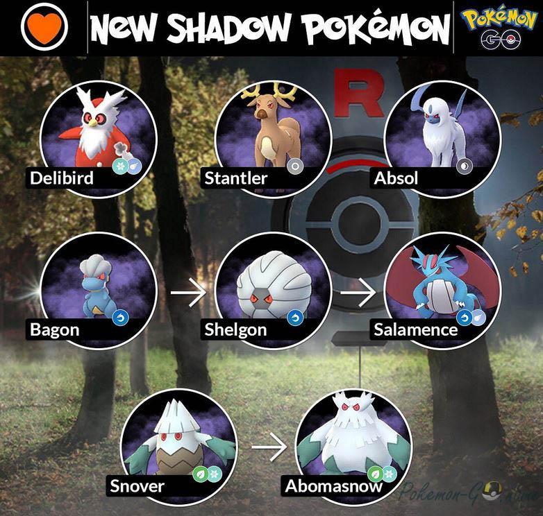 New Shadow Pokemon
