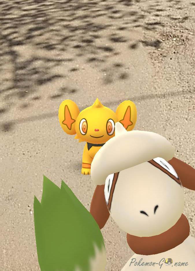Как найти и поймать Smeargle в Pokemon GO