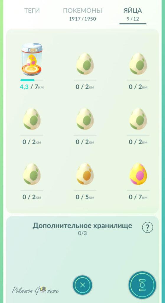 Яйца Покемон ГО в сумке
